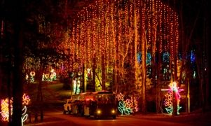 21 best images about fantasy in lights on pinterest - Callaway gardens christmas lights ...