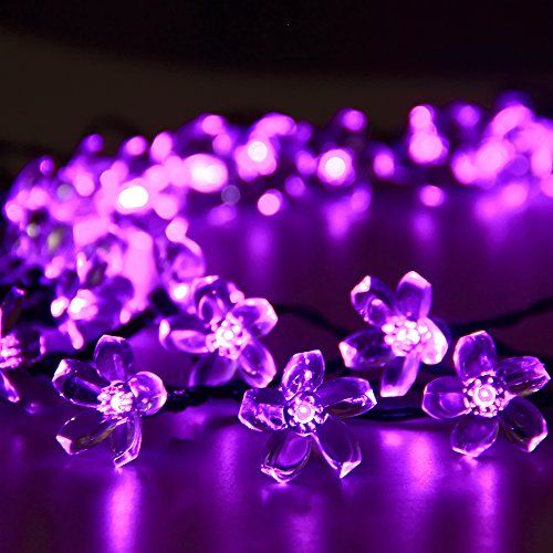 25+ Best Ideas About Led Fairy Lights On Pinterest