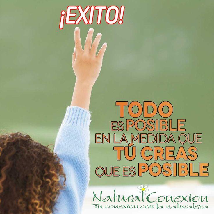 Para triunfar en la vida, no es importante llegar de primero. Para triunfar simplemente hay que llegar, levantándose cada vez que se cae en el camino. En Conexión con la Naturaleza www.naturalconexion.com