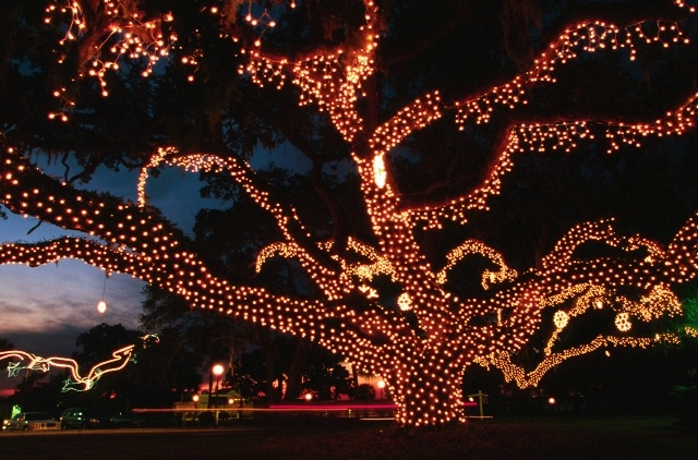 72 best Holiday's at the Jekyll Island Club Hotel images on Pinterest | Jekyll island, Holiday ...