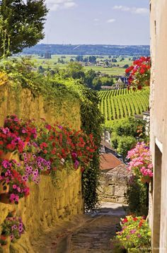 France Travel Inspiration - St. Emilion,Bordeaux,France.