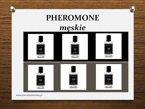 PHEROMONE męskie Federico Mahora