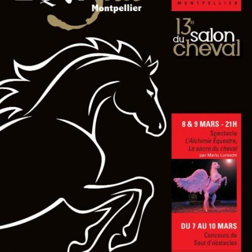 Les 75 meilleures images du tableau affiches salons congr s foires expositions sur pinterest - Salon du cheval montpellier ...