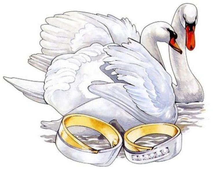 Чем-то там, открытки на годовщину свадьбы рисовать