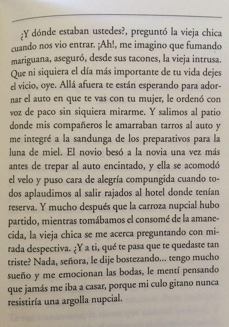 Háblame de amores. Pedro Lemebel.