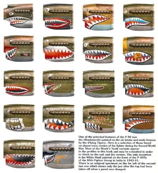 Different P-40 shark teeth. They shoulda had one with a stogie...