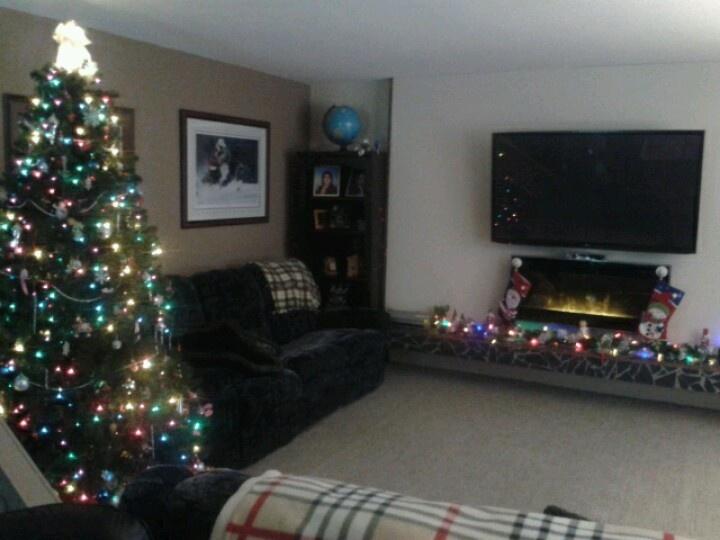 Christmas 2012 at the Danusers