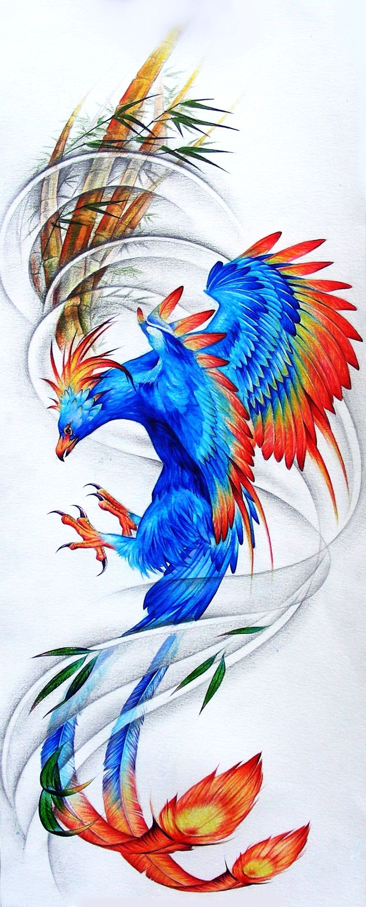 Colorful phoenix tattoo designs - Acrylic Painting Prismacolor And Other Stuff Tattoo Design For Ribs Phoenix
