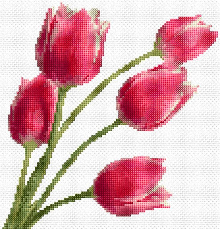 Cross Stitch | Tulips xstitch |