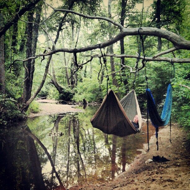 I need more hammocks in my life. Love this woodland scene by the water
