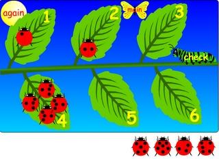 Interactive Education: Ladybug Counting