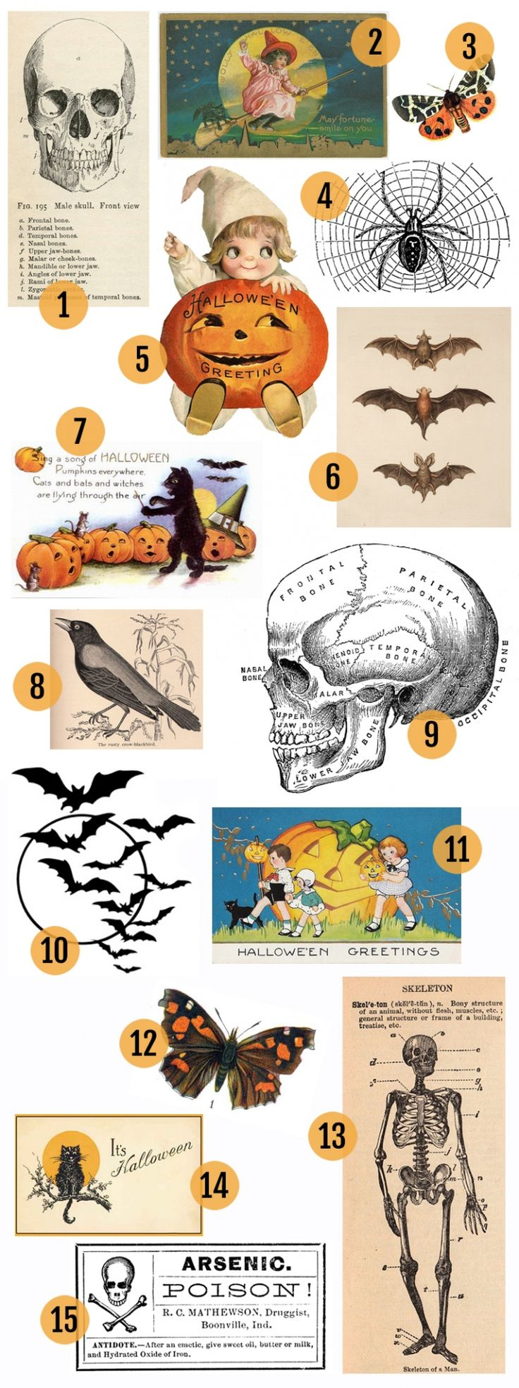 15 Free Vintage Halloween Clip Art Images >> Follow link to get image sources for each one.