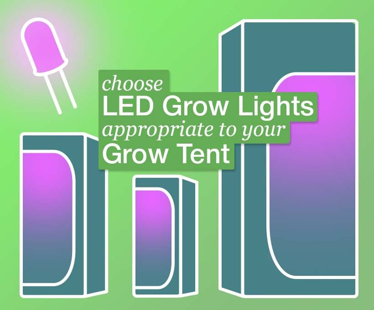 How to grow Marijuana? LED vs CFL, in a grow tent. That's easy and cheap.