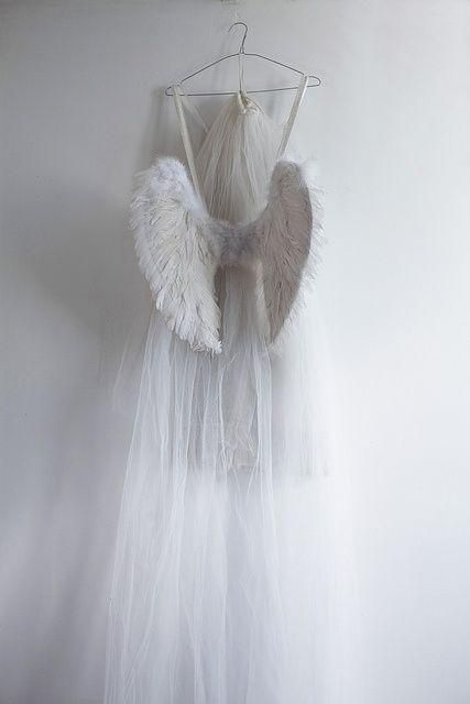Resting my wings