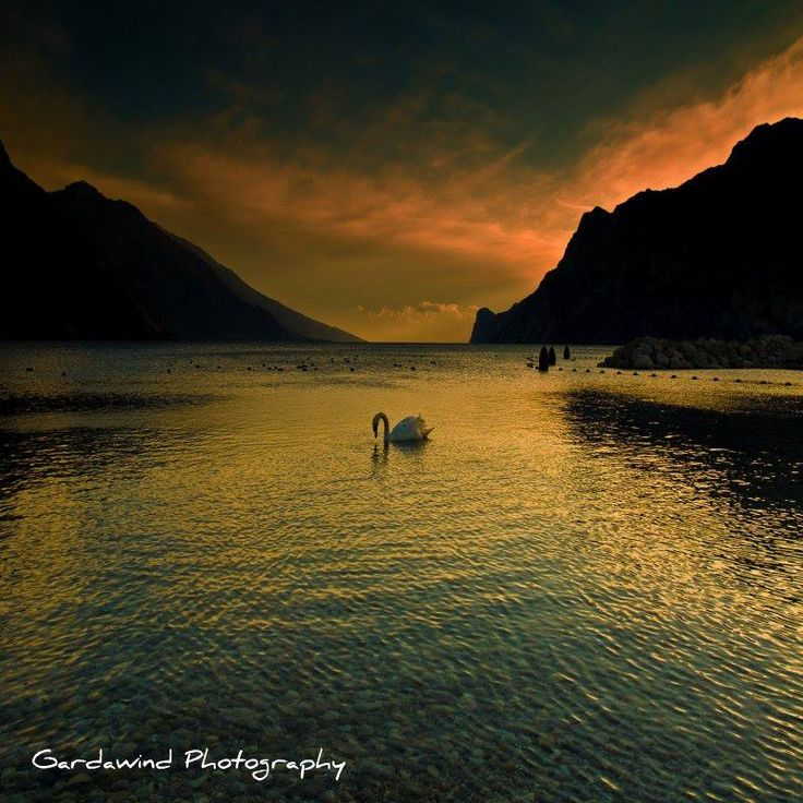 Sunset Garda.... Lago di Garda foto lovers #lagodigarda #gardalake #gardasee #lacdegarde
