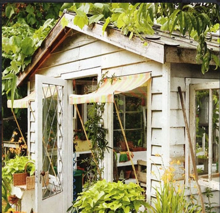 quintal jardim gloria : quintal jardim gloria: Jardim no Pinterest
