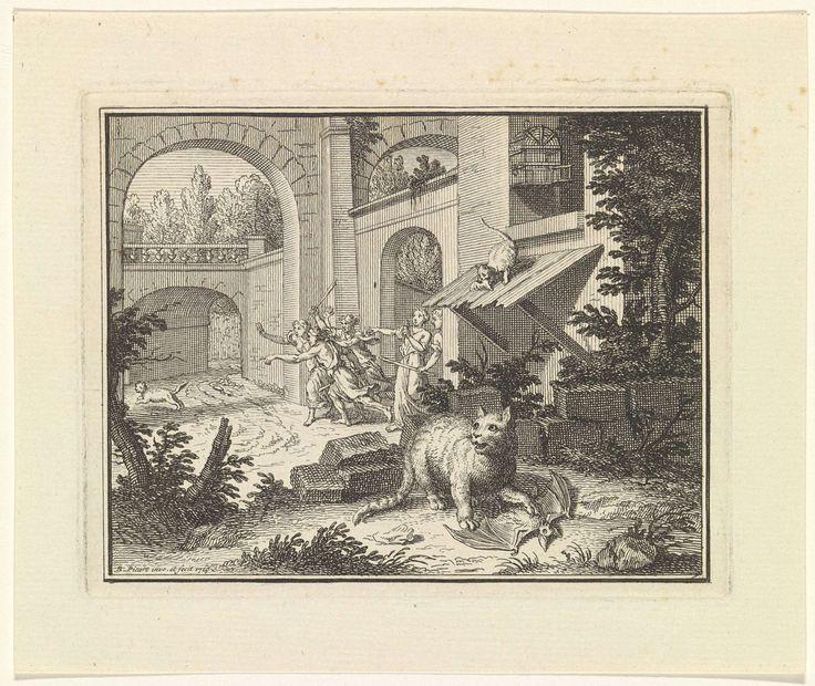 Kat doodt een vleermuis, Bernard Picart, 1719