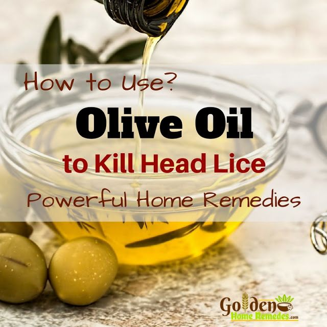 Natural Head Lice Treatment Olive Oil