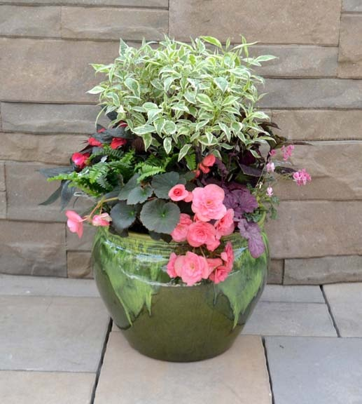 plant by numbers an easy way to make a container garden
