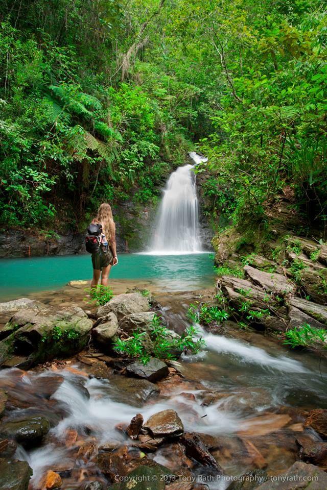 The lower falls of Tiger Fern Falls, Cockscomb Basin Wildlife Sanctuary, #Belize.  Photo by TonyRath.com