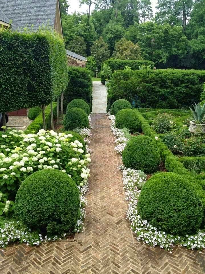 Boxwood And White Flower Hedges Outdoor Areas