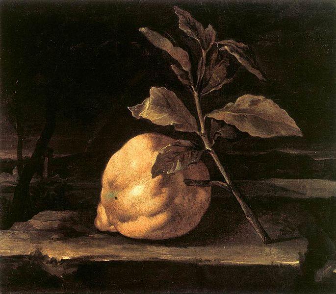 File:Bartolomeo Bimbi - Large Citron in a Landscape - WGA2201.jpg
