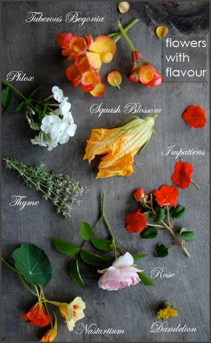 Just a few edible flowers for garnishing salads and decorating cakes. (It's raw, healthy food after all.)