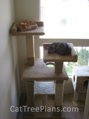 1000 Ideas About Homemade Cat Trees On Pinterest