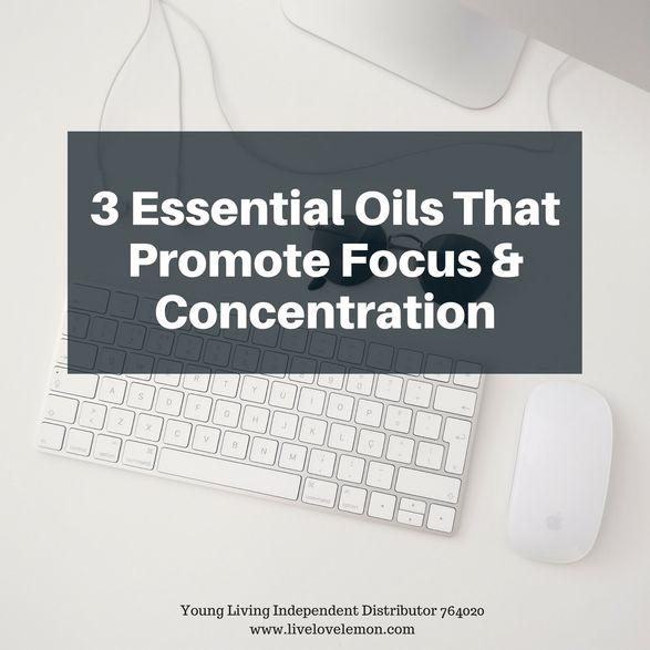 3 Essential Oils That Promote Focus & Concentration