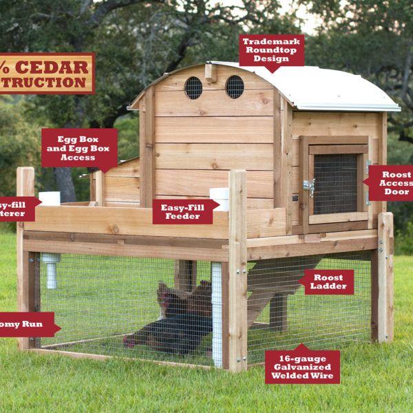 Round-Top Backyard™ Chicken Coop | Chickens backyard ...