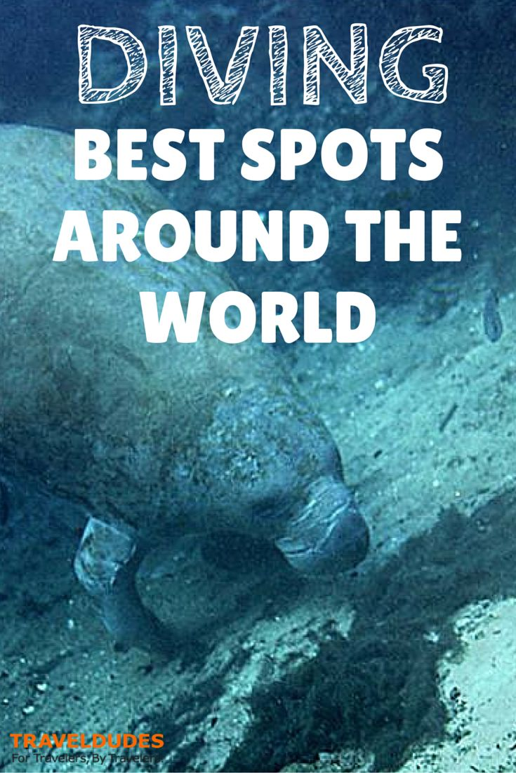 The Best Spots to Go Diving in 2015 | Are you an avid scuba diver who is always searching for a great new spot? Do you want to see some of the most amazing underwater locations? Are you a lover of all things aquatic and blue? | Travel Dudes Social Travel Community
