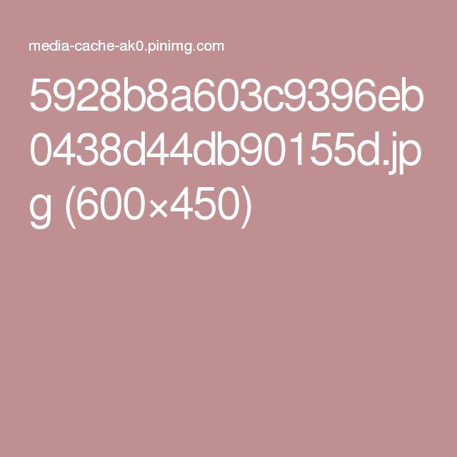 5928b8a603c9396eb0438d44db90155d.jpg (600×450)