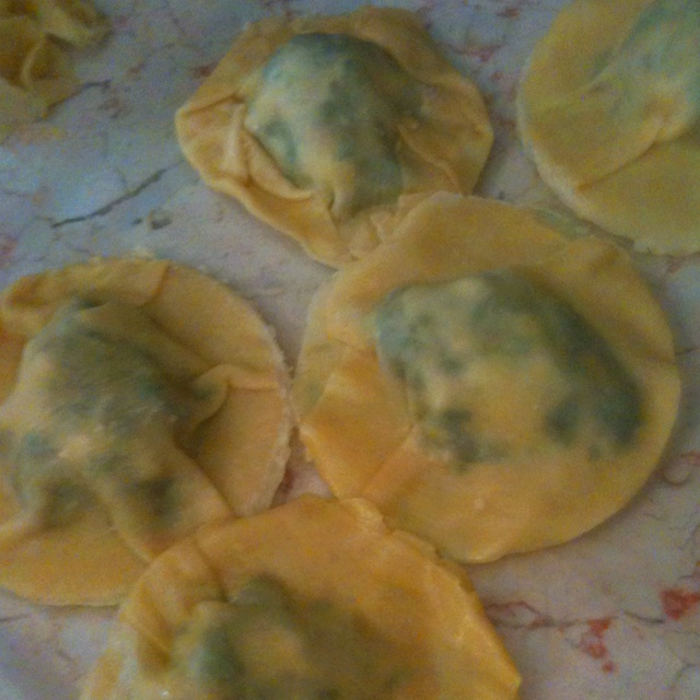 Home made ravioli, filled with spinach and cheese