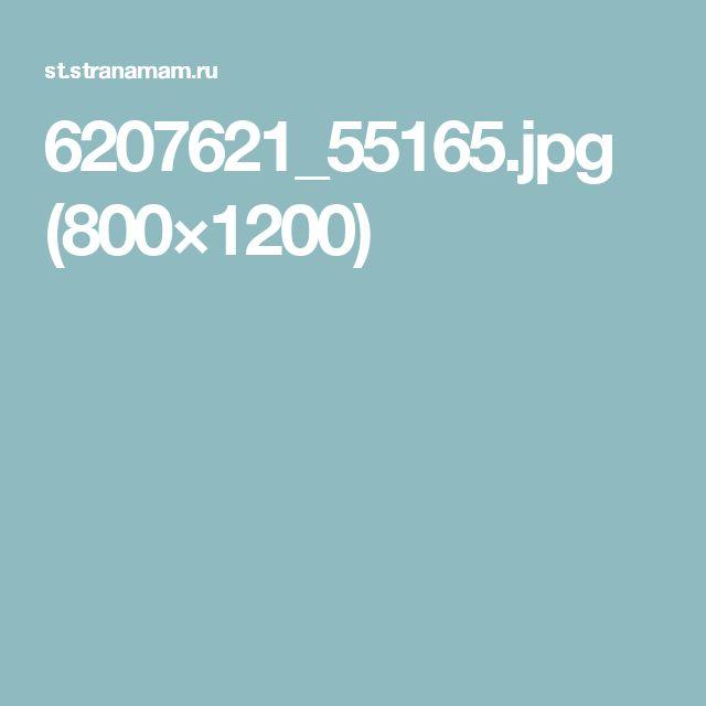 6207621_55165.jpg (800×1200)