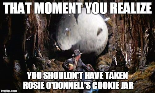 Indiana Jones Boulder | THAT MOMENT YOU REALIZE YOU SHOULDN'T HAVE TAKEN ROSIE O'DONNELL'S COOKIE JAR | image tagged in indiana jones boulder,rosie o'donnell,cookies,angry feminist | made w/ Imgflip meme maker