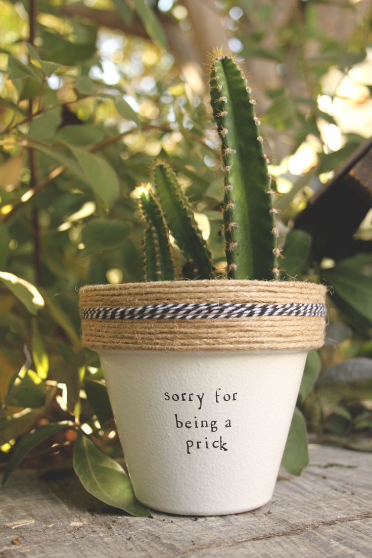 4 Sorry for Being a Prick