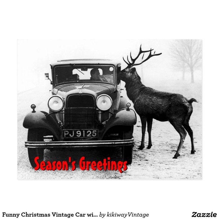 Funny Christmas Vintage Car with a Reindeer
