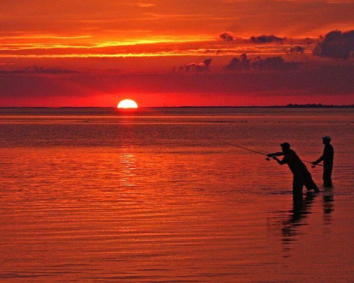 38 Best Panacea Florida _ Mashes Sands Beach Images On