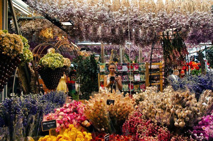 Blumenmarkt-Amsterdam
