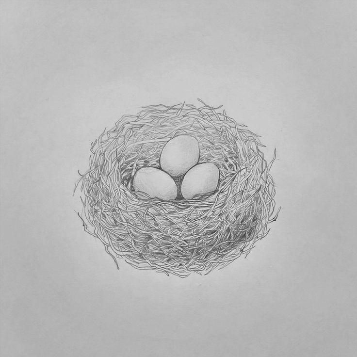 Home  #nest #birds #nature #drawing #illustration
