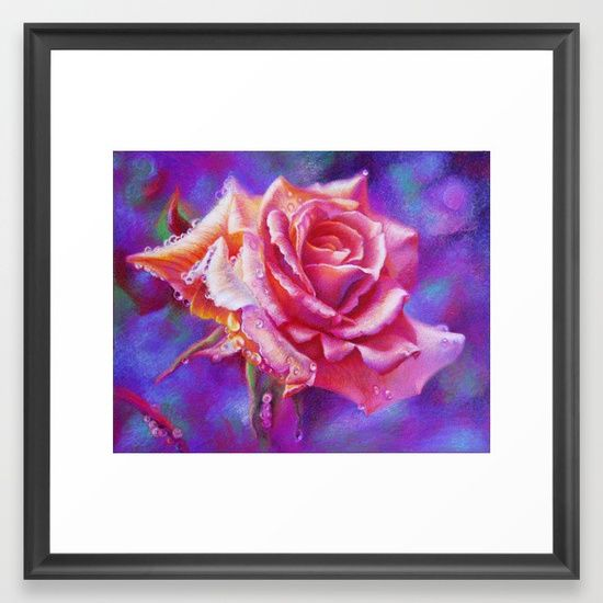Pink Rose on Purple Framed Art Print | floral art for sale | flower art for sale
