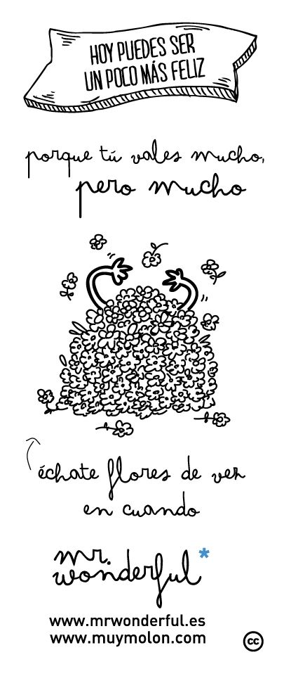 Porque tú vales mucho, pero mucho. Échate flores de vez en cuando. #quote #mrwonderful www.mrwonderful.es, www.muymolon.com
