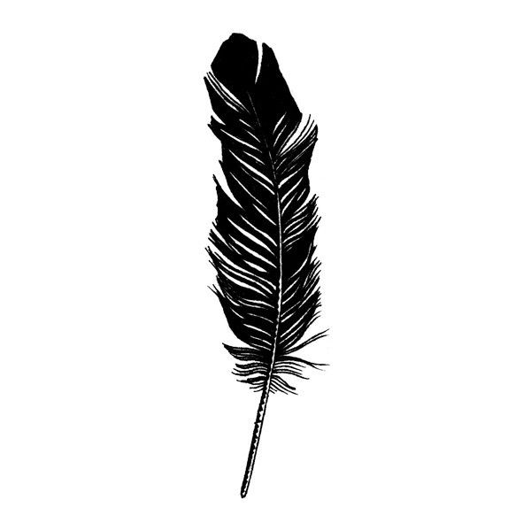 Image Feather from Tattly