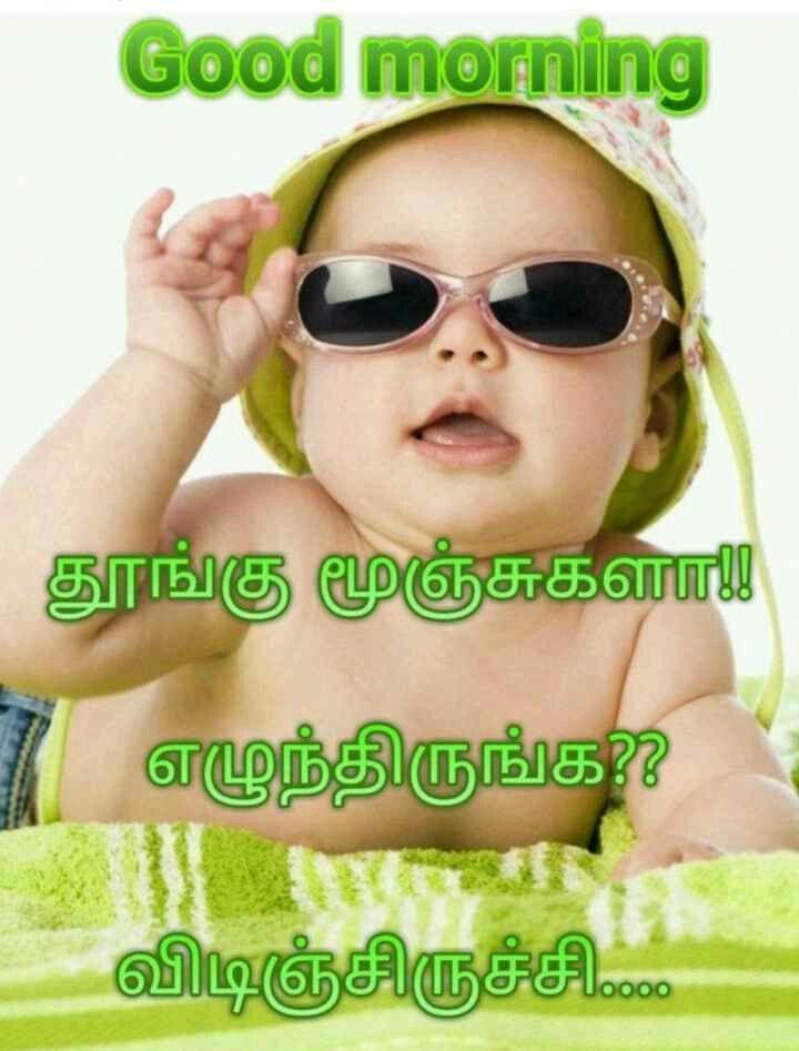 Pin By Saravanan Saravanan On Good Morning Good Morning Quotes Good Morning Picture Photo Album Quote