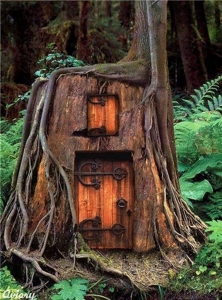 Fairy HouseTrees Trunks, Fairies Doors, Gnomes Home, Fairies Home, Tree Houses, Fairies House, Trees House, Hobbit House, Trees Stumps
