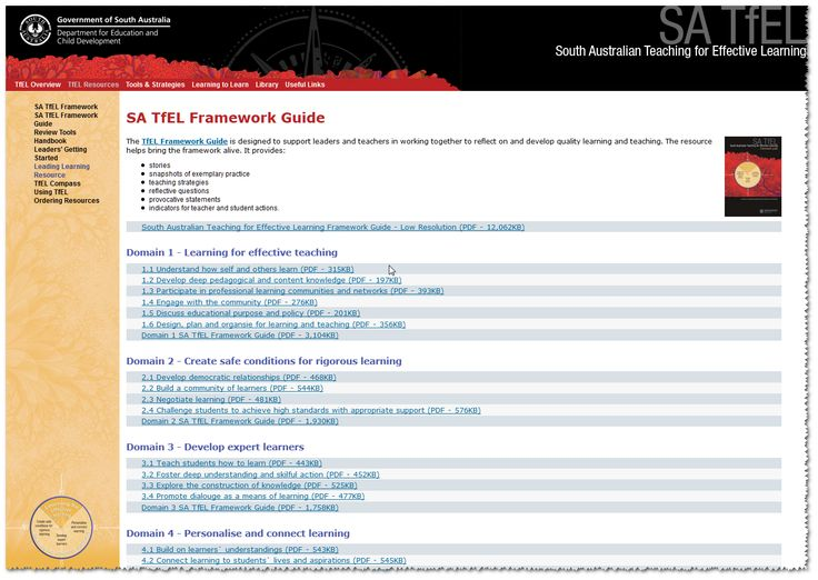 South Australian Teaching for Effective Learning (TfEL) Framework Guide http://www.learningtolearn.sa.edu.au/tfel/pages/tfelresources/