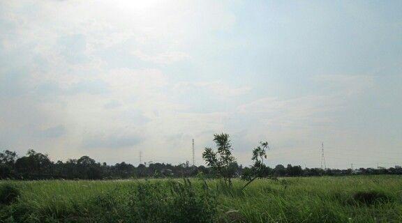 Bekasi bhumiphala, B.G.