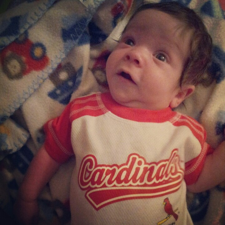 Pin By Andrew Garberolio On Bentley: My Wittle Cardinals Fan. ♡