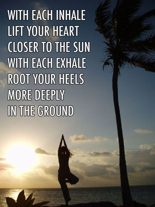 With each inhale lift yourself closer to the sun. With each exhale root yourself more deeply in the ground. #QuoteOfTheDay