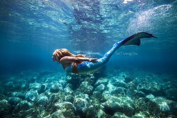 Photo / Mermaid tail by SeeThroughSea. A portion of the proceeds from each tail sale is donated to Oceanic Research, Marine Life Rehabilitation and Conservation!